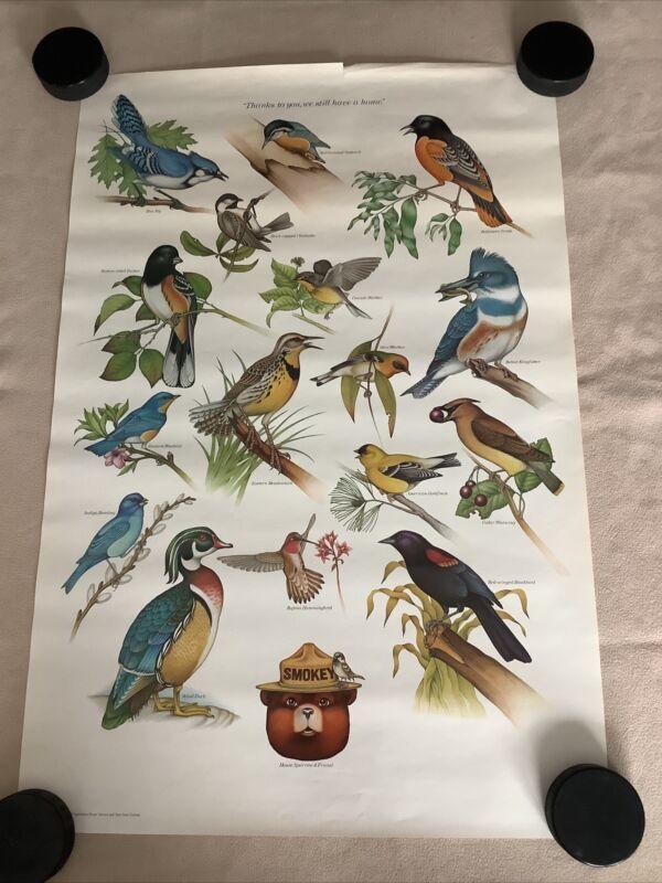 Vintage Smokey the Bear - Forest Service Poster - Birds - Bluebird, Oriole etc.