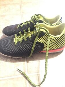 Addidas indoor soccer shoes(cleats)