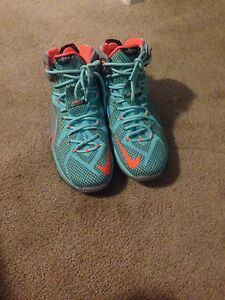 NIKE LEBRONS GOOD CONDITION WANT GONE ASAP $50 OBO