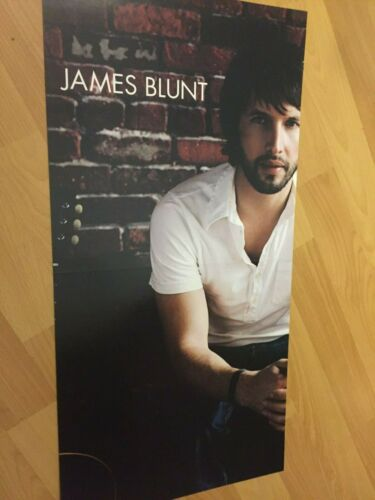 """James Blunt All The Lost Souls 12"""" x 24""""  Two-Sided Promo POSTER 1973 Cold Rock"""