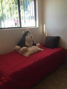 furnished room fr let Parramatta Parramatta Area Preview