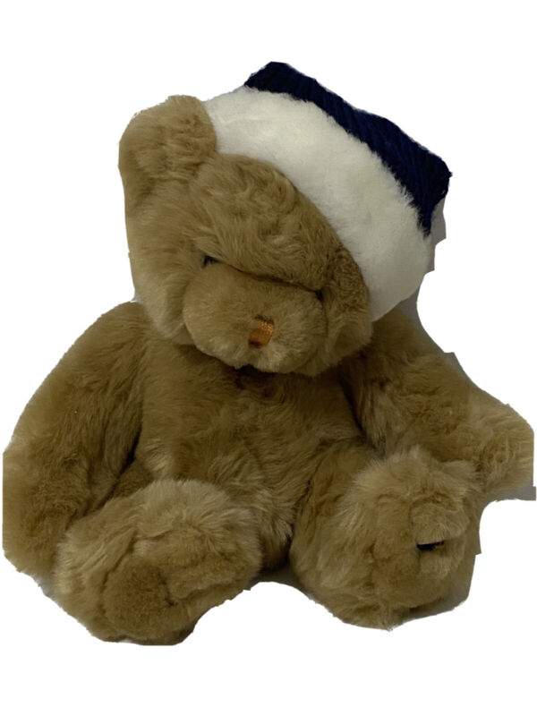Tommy Hilfiger Commonwealth Holiday Teddy Bear Plush Blue Snowflake Santa Hat