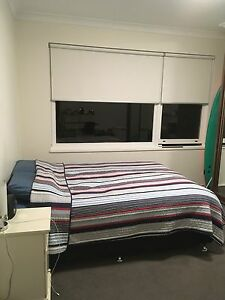 ROOM IN BONDI BEACH APARTMENT IN AWESOME SPOT!! Bondi Eastern Suburbs Preview