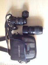 URGENT SALE Nikon D60 + 3 lenses Paddington Eastern Suburbs Preview