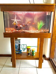 Fish tank, stand, fish, filter complete Duncraig Joondalup Area Preview