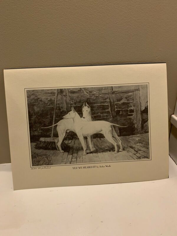 Antique YES WE HEARD IT  Dogs Print  by Arthur Wardle  16x 12. BULL TERRIER