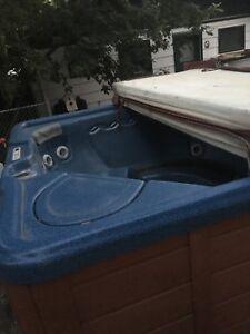 Tiger spa hot tub