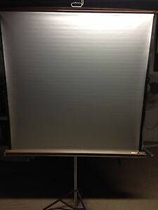 Portable Projector Screen