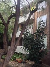 A LOVELY PLACE TO CALL HOME! Elsternwick Glen Eira Area Preview