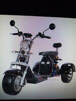 E Roller-Harley 3 Rad Trike, Citycoco Bayern - Oberhaid Vorschau