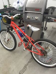 2010 specialized p.grom motivated to sell