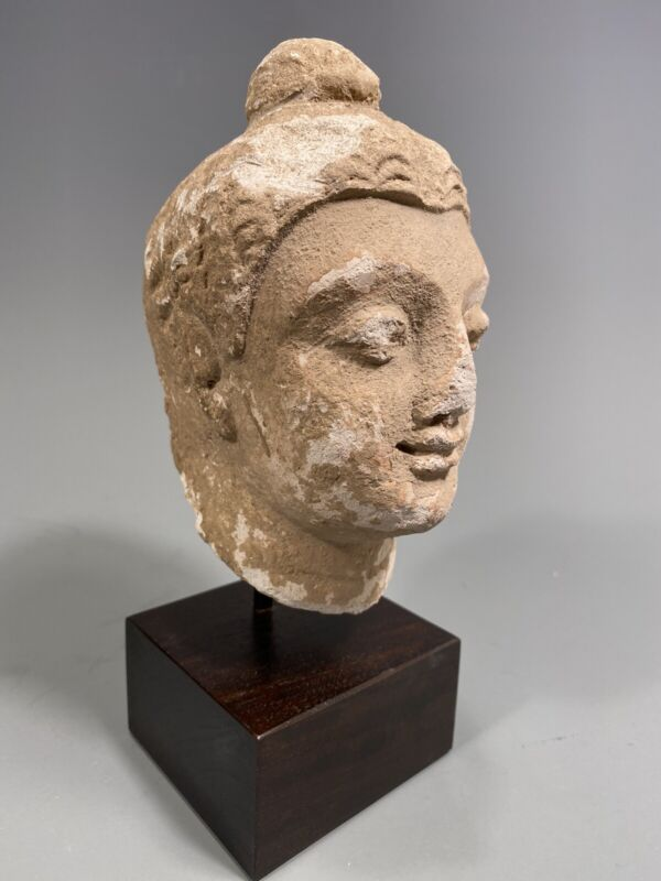 Fine Afghanistan Gandharan Stucco Head of Buddha on custom Stand ca. 100 AD