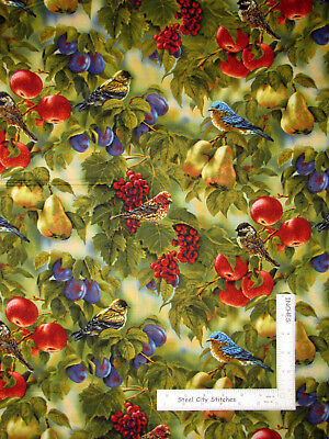Bird Sanctuary Birds Fruit Tree Branch Cotton Fabric Springs CP21851 By The Yard