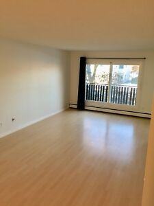 Large 2 Bedroom Condo Downtown! One month free rent!!