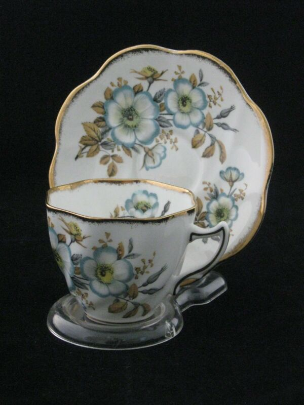 Rosina Porcelain Tea Cup & Saucer Made In England