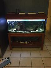 4ft fish tank and accessories Ningi Caboolture Area Preview