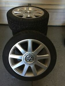 225/45R17 Arctic Winter Tires for VW.
