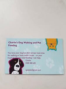 Charlie's Dog Walking and Pet Feeding South Hobart Hobart City Preview