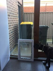 Install dog door Cairnlea Brimbank Area Preview