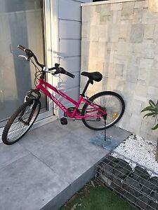 Mountain bike Hurstville Hurstville Area Preview