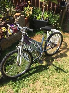 Girls bicycle small frame 24in