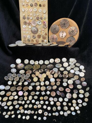 Antique Mother of Pearl & Abalone Buttons - Large Lot, Over 300 Buttons