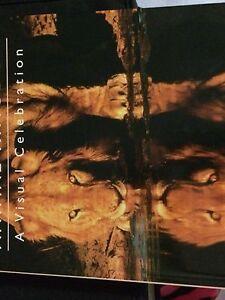 Africa's animal kingdom book Heathwood Brisbane South West Preview