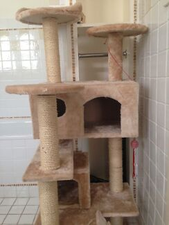 Tall Cat Scratching Tower Northbridge Willoughby Area Preview