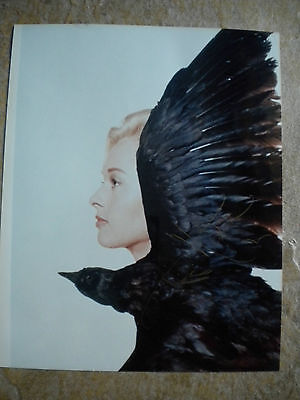 The Birds 8x10 Color Photo Autographed by Tippi Hedren