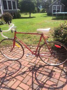 Vintage 1987 12 speed Jocelyn Lovell special edition