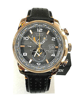 NEW Citizen AT9013-03H World Time  Rose Gold Men's Watch 5 YEARS WARRANTY