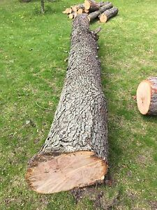 Black cherry lumber / wood available to mill