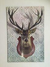 Deer poster on board - Vegan Hunting Trophy Newtown Inner Sydney Preview