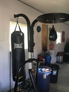 Everlast Heavy Bag/Speed Bag Combo with stand.