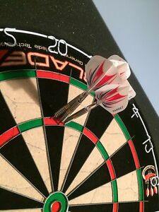 Chizzy 22g Darts (Pixel and Gold) James wade 20g Kitchener / Waterloo Kitchener Area image 1