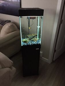 Fish Tank 15 Gallon and All Accessories