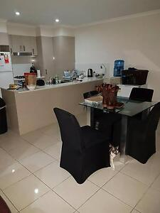 2 rooms for rent 150 a week each in mango hill. Mango Hill Pine Rivers Area Preview