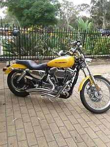 2007 harley davidson sportster 1200 custom Athelstone Campbelltown Area Preview
