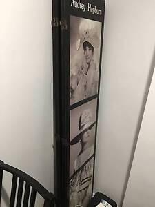 Audrey Hepburn Screen, Waterloo/Zetland Waterloo Inner Sydney Preview