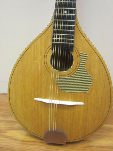 Vintage Kingston Mandolin  1970s  w/bag  ser# n/a