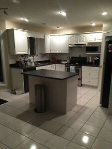Roommate(s) wanted!! Beautiful house with lots of room for you!