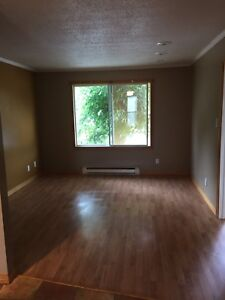 Large 1 bed apartment for rent