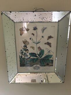 Coco republic mirror frame botanical prints x 2