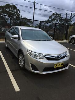 Toyota Camry Hybrid Car Rental Weekley $280
