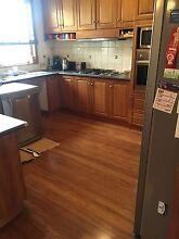 High Grade Bamboo Flooring Cheap!! Frankston Frankston Area Preview