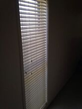 Accent Venetian Blinds x 4 (60cm x 210cm) Warners Bay Lake Macquarie Area Preview