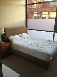 Bed Surry Hills Inner Sydney Preview