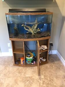 Fish tank and stand for sale $150 obo