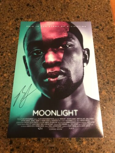 * BARRY JENKINS * autographed signed 12x18 photo poster *MOONLIGHT * 3
