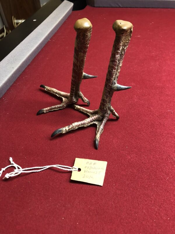 wild turkey foot spur hunting taxidermy ,  Set Of 1 1/4 Spurs!!!